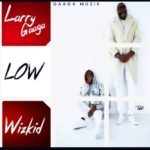 Larry Gaaga ft. Wizkid – Low